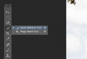 Select the 'Quick Selection Tool' in Photohop
